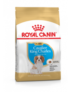 CAVALIER KING CHARLES 1.5KG PUPPY ROYAL CANIN