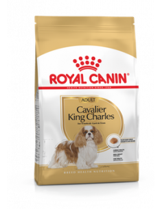 CAVALIER KING CHARLES ADULT ROYAL CANIN