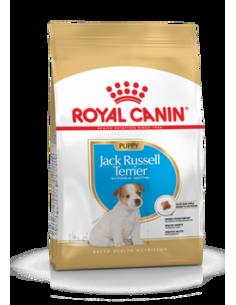 JACK RUSSEL JUNIOR 1.5KG ROYAL CANIN