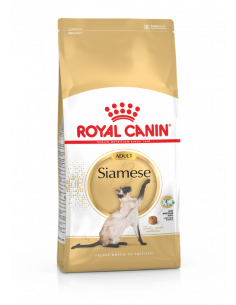 SIAMOIS ADULT  2 KG ROYAL CANIN