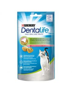 Dentalife chat au saumon 40g