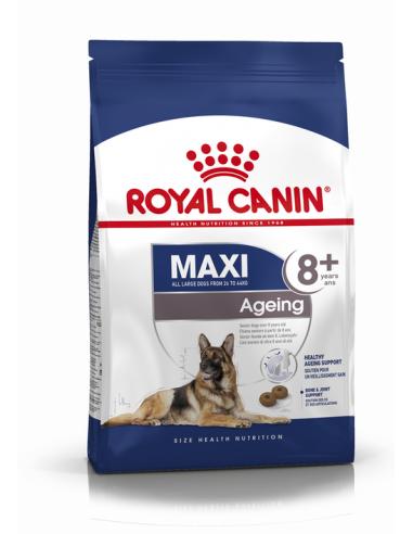 MAXI AGEING 8+ ROYAL CANIN