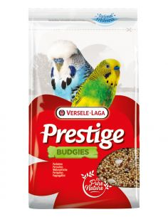 Prestige perruche