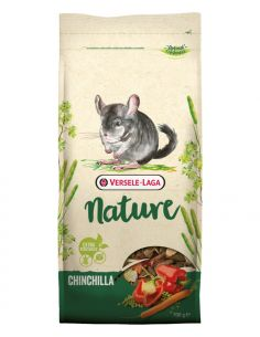 Nature chinchilla