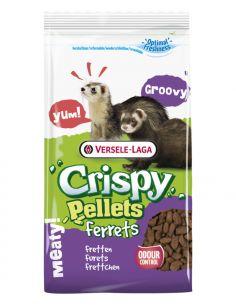 Crispy pellet pour furret