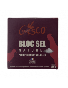 BLOC SEL NATURE 950G GASCO