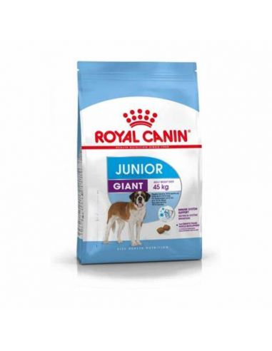 CROQUETTE JUNIOR GIANT ROYAL CANIN