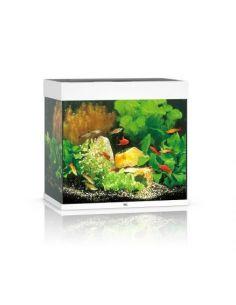 JUWEL Aquarium LIDO 120 Led blanc - L.61 x l.41 x H.58 cm
