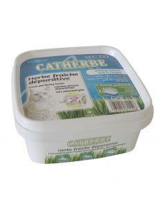 Herbe fraiche dépurative Catherbe dépuratif 220 gr