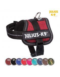 HARNAIS POWER JULIUS 3 XL-XXL