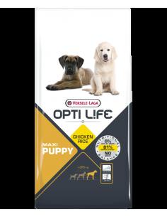 Puppy maxi 12.5KG