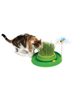 Play circuit vert pour chat