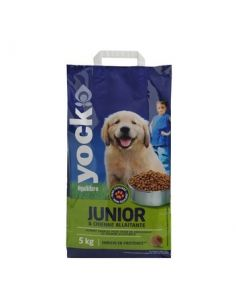 YOCK CHIEN EQUILIBRE JUNIOR