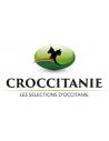 Croccitanie